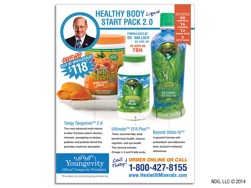 Heal with Minerals flyer (back)